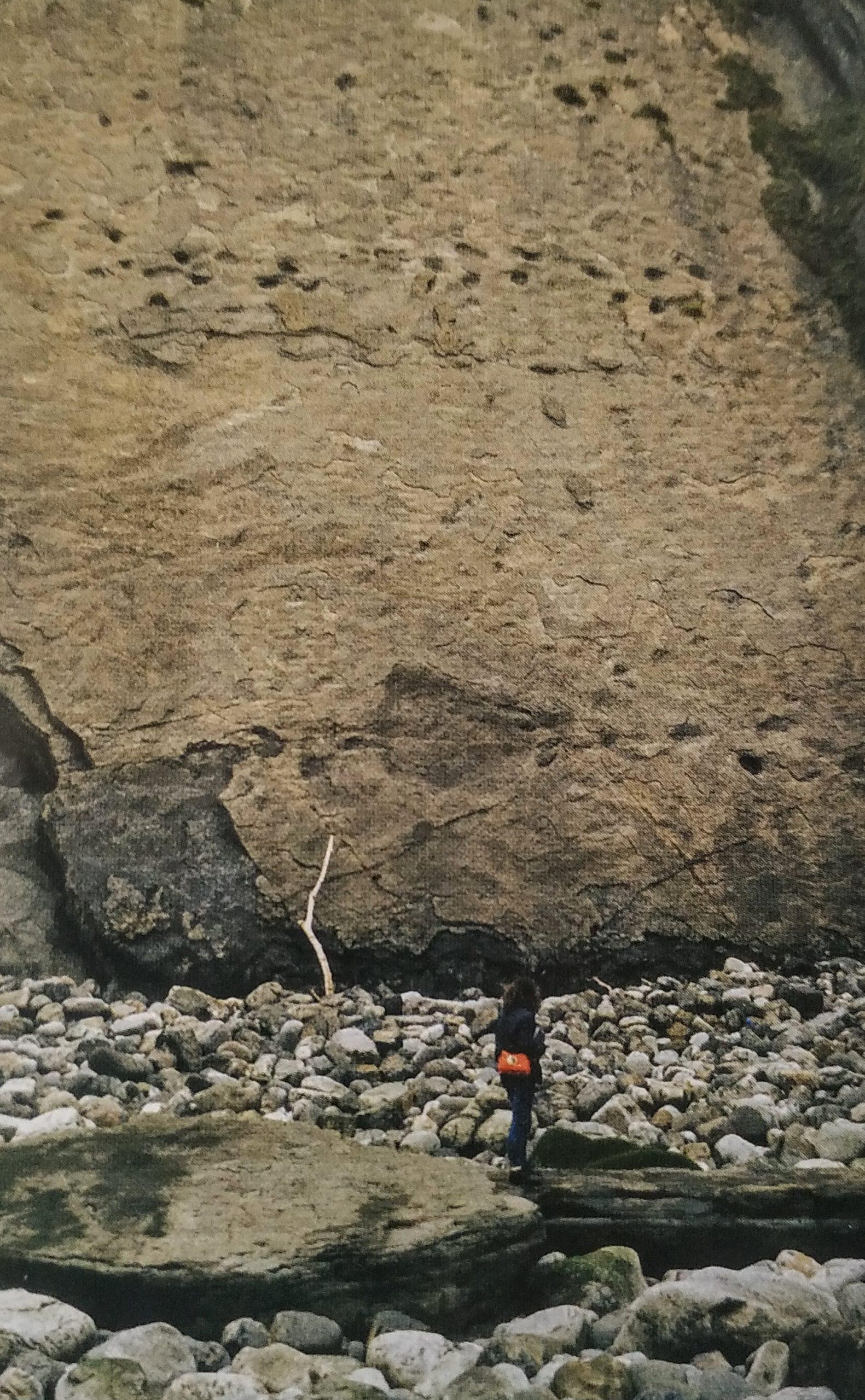 LLANES | La costa de los dinosaurios... DESCUBRE!!
